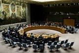 В Совбезе ООН в понедельник обсудят ситуацию в Сирии в связи с операцией Анкары
