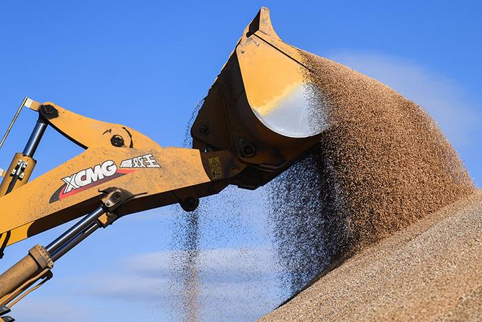 РФ впервые вышла на второе место в мире по экспорту зерна