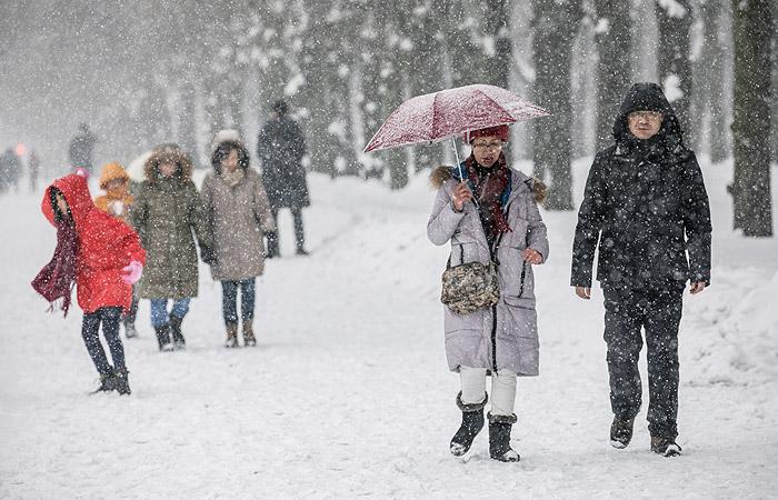 Непогода в Москве привела к человеческим жертвам