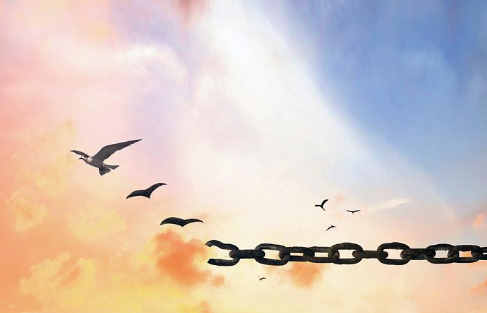 ФСИН подтвердила факт освобождения пожизненно осужденного