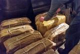 """Предполагаемый организатор """"кокаинового дела"""" Ковальчук задержан в Германии"""
