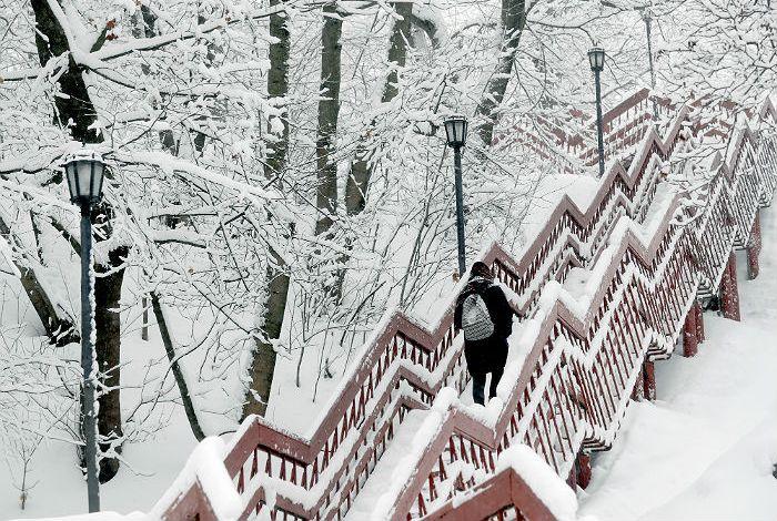 Пятая часть месячной нормы осадков выпала в Москве за ночь