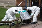 В ОЗХО опровергли наличие вещества BZ в пробах из Солсбери