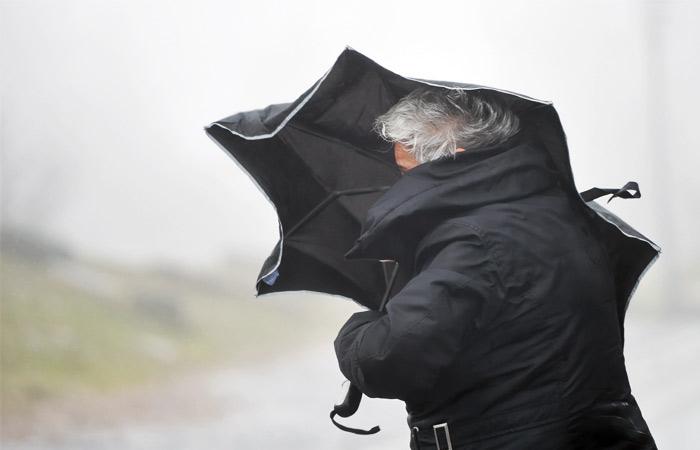 Количество жертв урагана в Москве увеличилось до трех