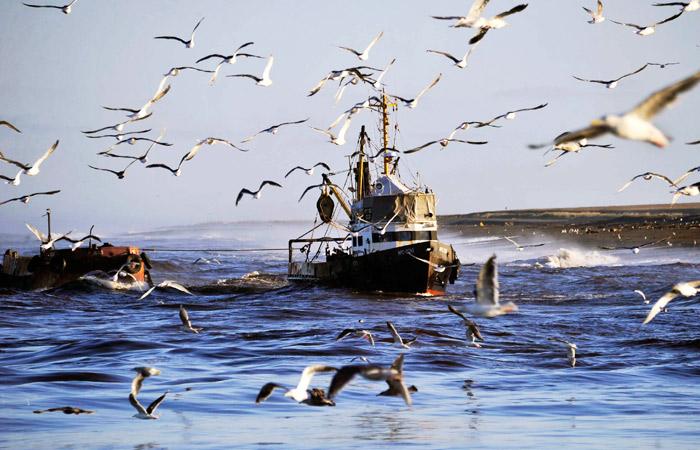 Российская Федерация испугалась «украинских пиратов» вАзовском море