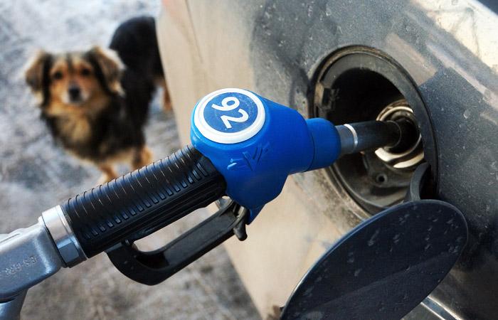 ВКрасноярске вweb-сети интернет «Газпромнефть» снова подняли цены набензин