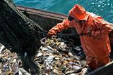 Российские пограничники задержали украинское рыболовецкое судно в Черном море