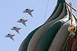 Сверхзвуковые истребители-перехватчики МиГ-31. В воздушной части парада полеты самолетов проходили на высоте от 300 до 500 м и скорости до 600 км/ч