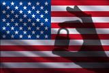 Госдума приняла закон о санкциях против США и ряда других стран