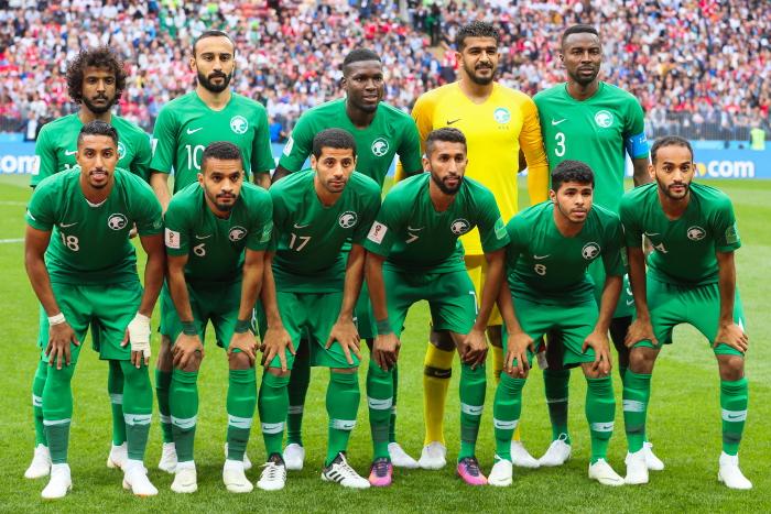 Инцидент ссамолетом сборной Саудовской Аравии мог случится только из-за птицы— специалист