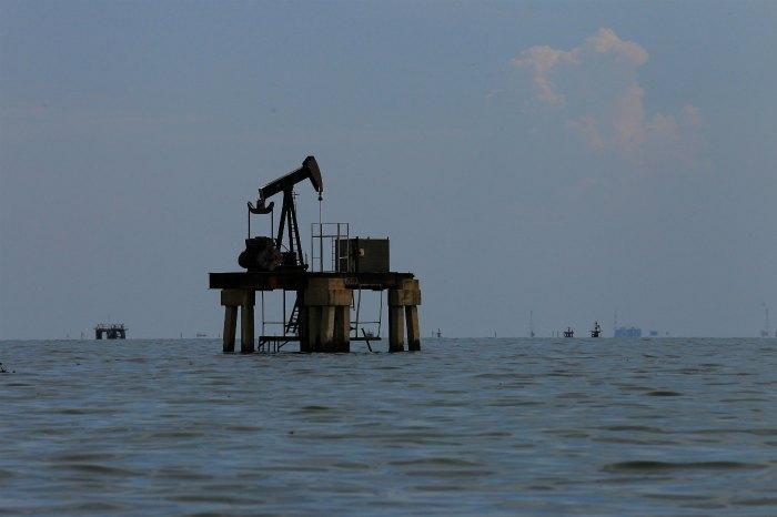 Новак назвал долю РФ в общем увеличении добычи нефти стран ОПЕК+
