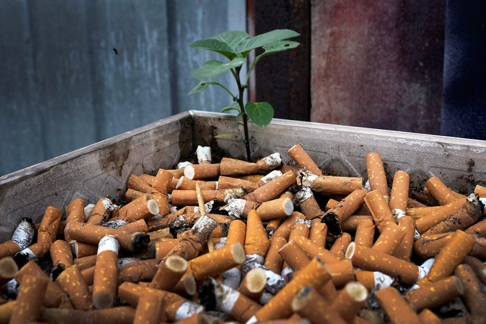 Минздрав предложил ввести экологический налог насигареты