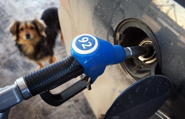 ФАС не нашла причин для снижения цен на бензин в рознице вслед за биржевой стоимостью