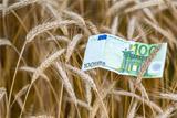 ЕСПЧ обязал РФ выплатить 2,5 млн евро молдавским фермерам