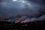 Число жертв пожаров в окрестностях Афин возросло до 20 человек