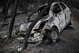 Власти Греции заподозрили, что причиной пожаров вокруг Афин мог стать поджог