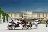 Вену признали самым комфортным городом для проживания в 2018 году