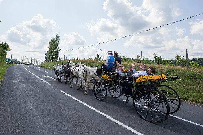 Песков рассказал о подарках Путина на свадьбу главе МИД Австрии