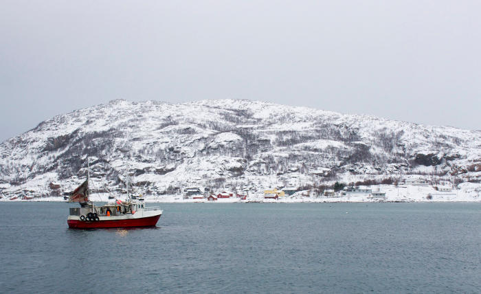 СМИ сообщили о планах РФ поднять ракету с ядерной установкой со дна Баренцева моря