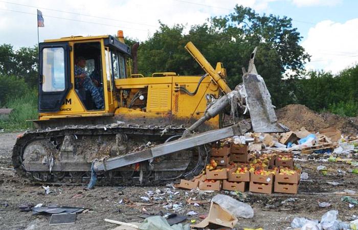 В России за три года уничтожили почти 26 тыс. тонн санкционных продуктов