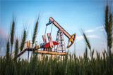"""Новак спрогнозировал снижение добычи нефти в РФ после 2021 года без льгот для """"нефтянки"""""""