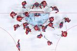 Назван состав сборной России по хоккею на Кубок Карьяла