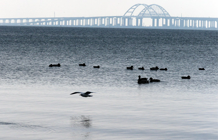 В информцентре Крымского моста посмеялись над заявлением Украины о его проседании