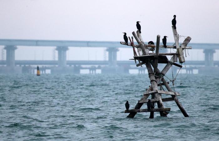 Захарова объяснила меры безопасности вокруг Крымского моста