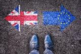 Суд ЕС решил, что Великобритания может отказаться от Brexit в одностороннем порядке
