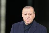 Эрдоган предостерег от вмешательства внешних сил в дела Сирии