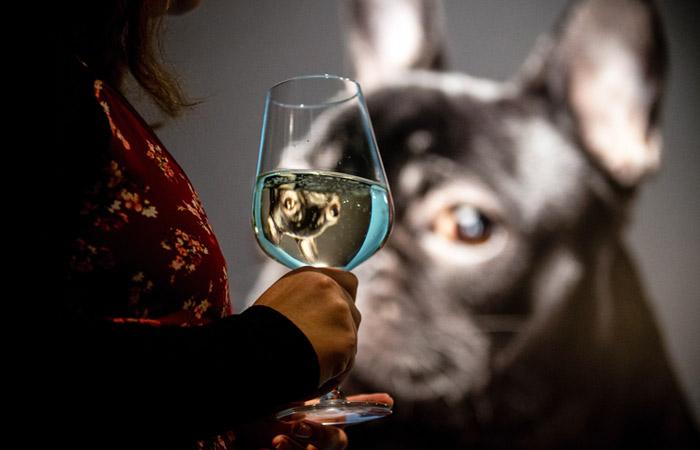 Минздрав подготовил законопроект о повышении возраста продажи алкоголя до 21 года