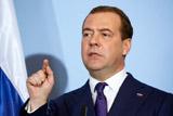 Медведев пообещал разобраться со строительством завода на Байкале