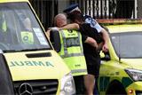 Стрельба в двух новозеландских мечетях. Обобщение