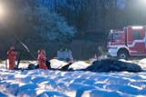 Совладелица S7 Наталия Филева погибла в авиакатастрофе в Германии. Обобщение