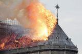 В Париже нашли медного петуха, украшавшего рухнувший шпиль Нотр-Дама