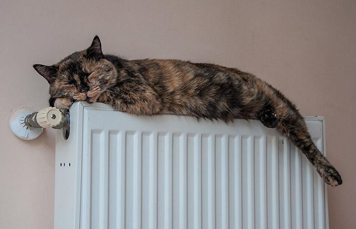 Отопление в Москве начнут отключать 6 мая