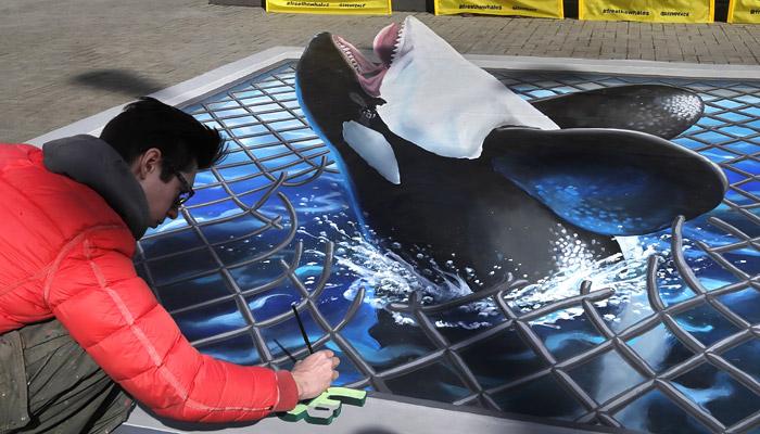 """Владелец """"китовой тюрьмы"""" пообещал освободить косаток и белух"""