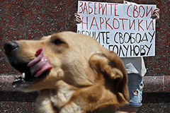 """""""Медуза"""" сообщила о допросе сотрудников по """"делу Голунова"""""""