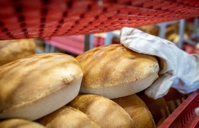 Сотрудники хлебокомбината в Сергиевом Посаде прекратили голодовку