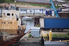 """Косаток из """"китовой тюрьмы"""" начали перегружать в грузовики"""