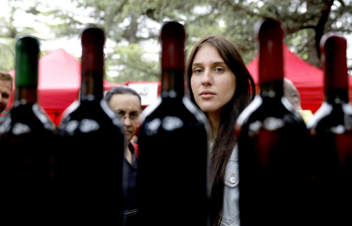"""""""Коммерсантъ"""" сообщил о возможном запрете на импорт в РФ вин из Грузии"""