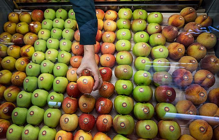 Российские садоводы предложили запретить импорт фруктов на 9 месяцев в году