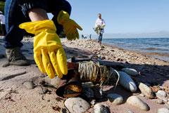 Дожди в Сибири поставили Байкал под угрозу загрязнения шлаками комбината
