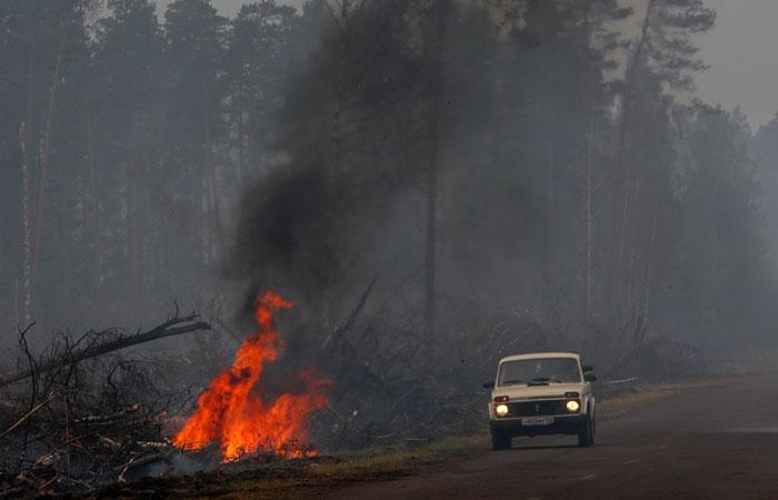Лесные пожары в России охватили около 3 млн га