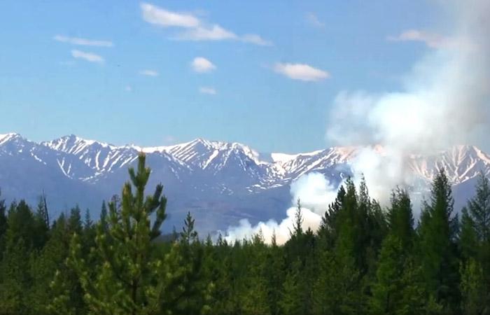 МЧС поблагодарило США за предложение помощи в борьбе с лесными пожарами