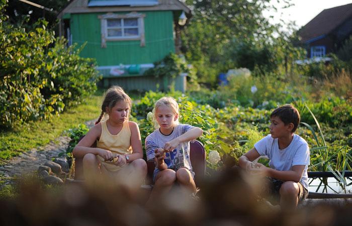 За 14 лет удвоилось число россиян, которые считают дачу местом для отдыха