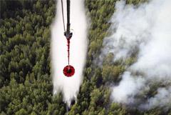 Площадь пожаров в Сибири и на Дальнем Востоке сократилась на четверть
