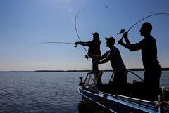 В РФ разработают специальные правила для рыбаков-любителей