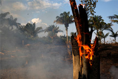 Болсонару обвинил Макрона в колониализме за высказывания о пожарах в Амазонии