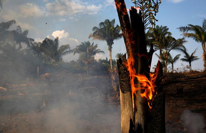 Президент Бразилии обвинил Макрона в колониализме за высказывания о пожарах в Амазонии